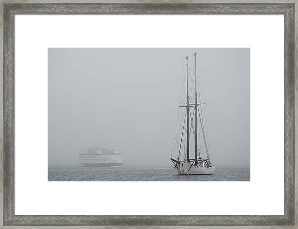 Into The Fog Framed Print