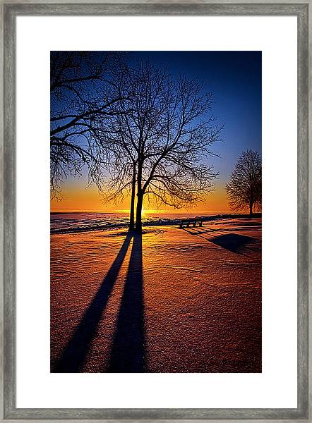 Into The Shadows Of Light Framed Print