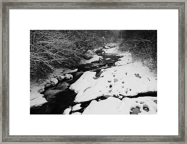 Into The Snowy Wilderness Framed Print