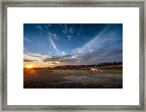 Into The Sunset Framed Print