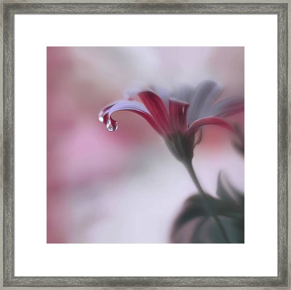 Invisible Touch... Framed Print