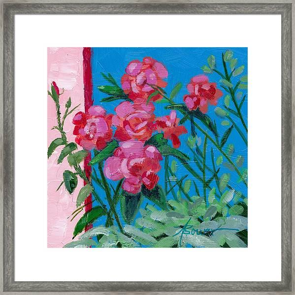 Ioannina Garden Framed Print