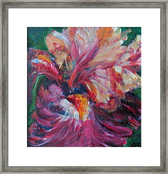 Iris - Bold Impressionist Painting Framed Print