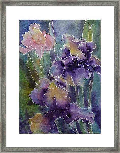Iris Love Framed Print