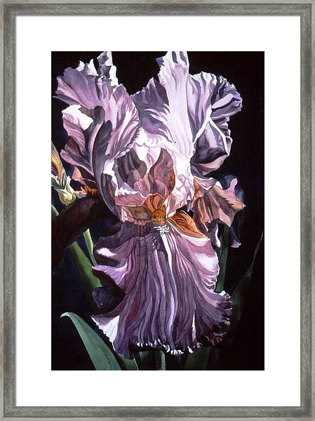 Iris With Light Framed Print