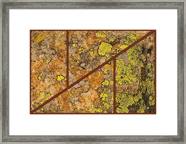 Iron And Lichen Framed Print