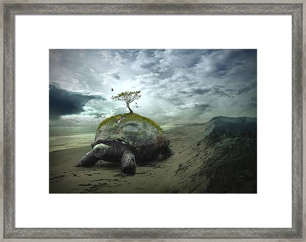Iroquois Creation Story Framed Print