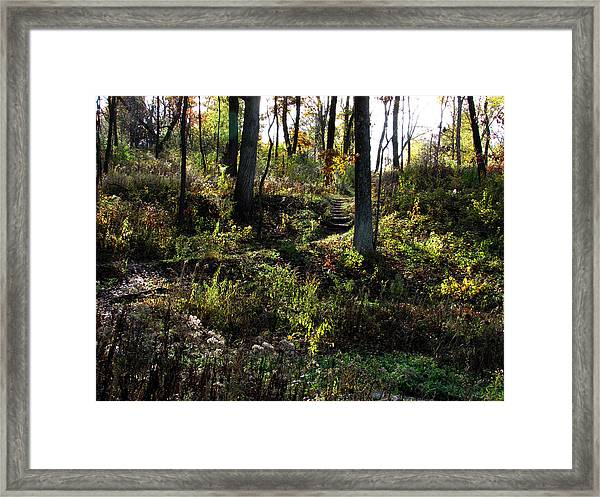 Is This Paradise Framed Print by Kimberly Mackowski