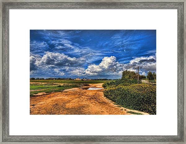 Israel End Of  Spring Season  Framed Print