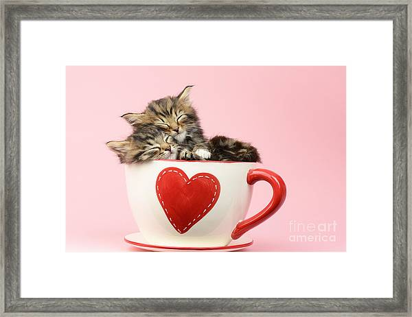 It Must Be Love Framed Print