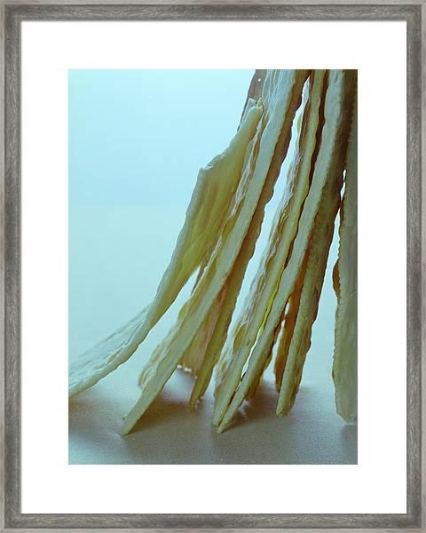 Italian Crackers Framed Print