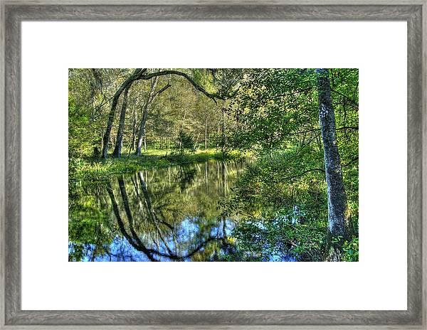 Itchetucknee Springs 03 Framed Print