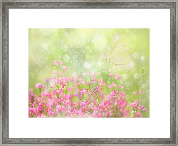 It's A Beautiful Day... Framed Print