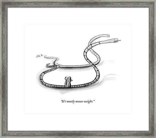 It's Mostly Mouse Weight Framed Print by Jason Adam Katzenstein