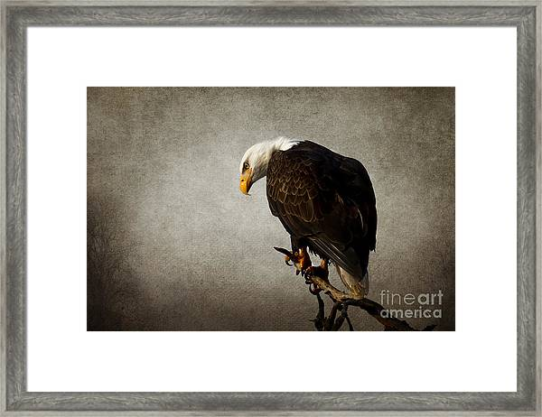 Ivory Towers Framed Print