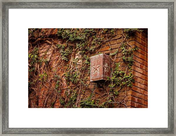 Ivy League Star Framed Print