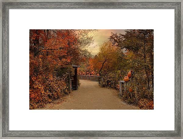 Jack-o-lantern Lane Framed Print