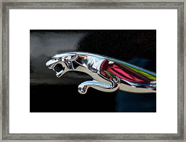 Jaguar Car Emblem Framed Print