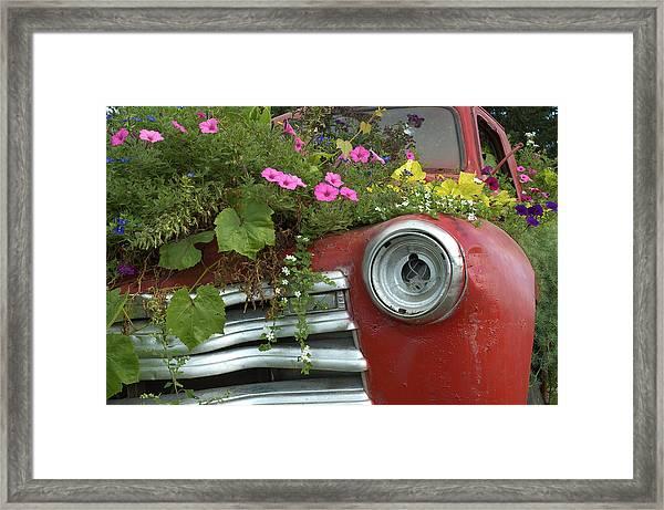 Jalopy Garden Framed Print