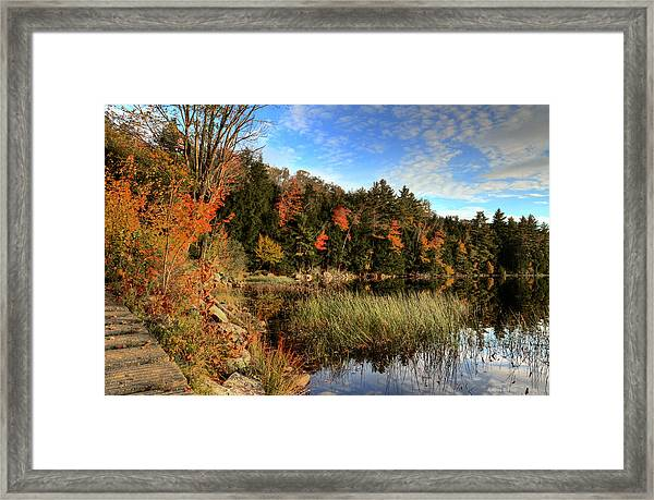 Jamies Pond 2 Framed Print