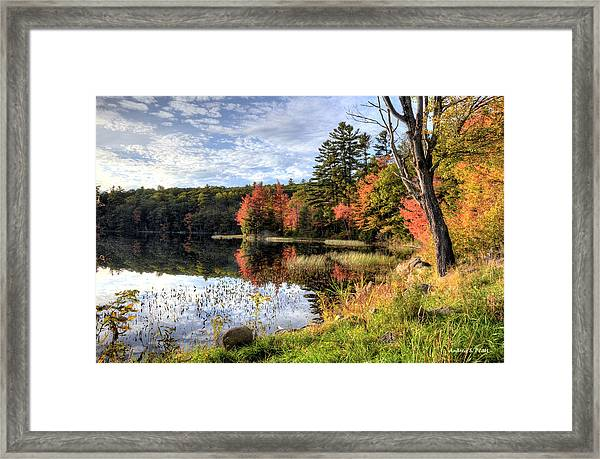 Jamie's Pond Framed Print