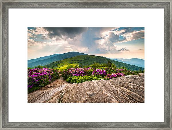 North Carolina Blue Ridge Mountains Landscape Jane Bald Appalachian Trail Framed Print