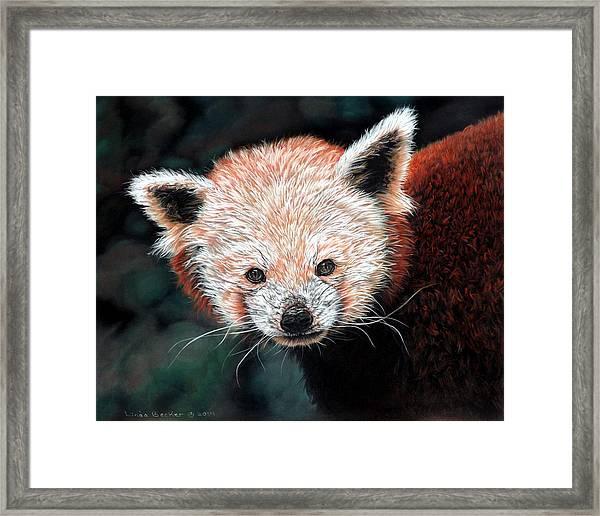 Jane Framed Print