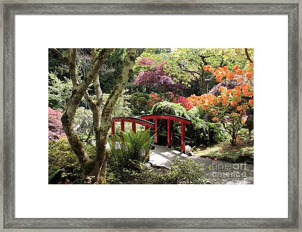 Japanese Garden Bridge With Rhododendrons Framed Print