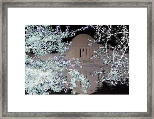 Jefferson Blossoms Framed Print
