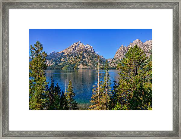 Jenny Lake Overlook Framed Print