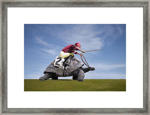 Jockey Over A Turtle Framed Print by Buena Vista Images