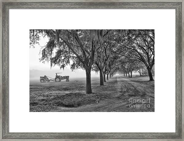 John Deer Tractor And The Avenue Of Oaks Framed Print