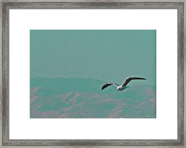 Jonathan Framed Print
