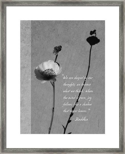 Joy Of Life Framed Print