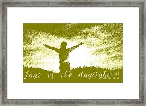 Joys Of The Daylight Framed Print