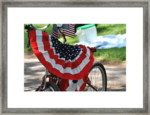 July 4th Picnic Framed Print