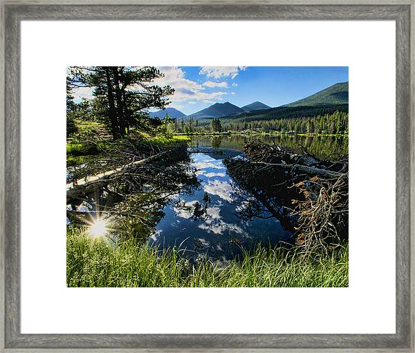 July Morning Framed Print