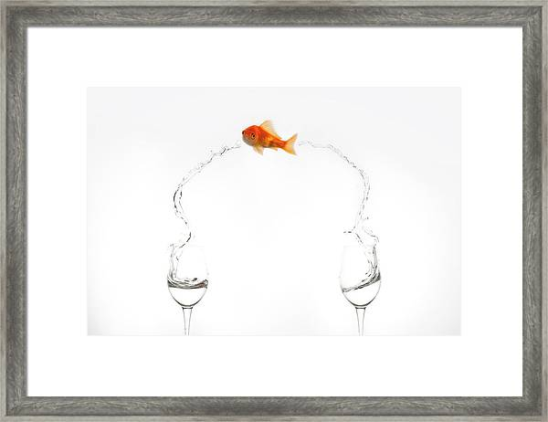 Jump! Framed Print by Jose Beut
