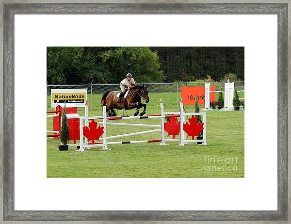 Jumping Canadian Fence Framed Print