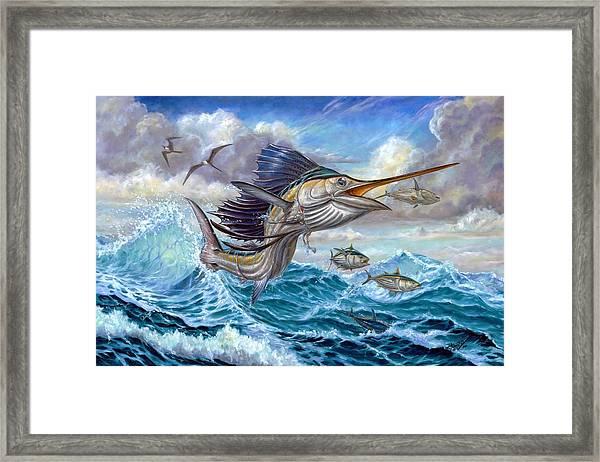 Jumping Sailfish And Small Fish Framed Print