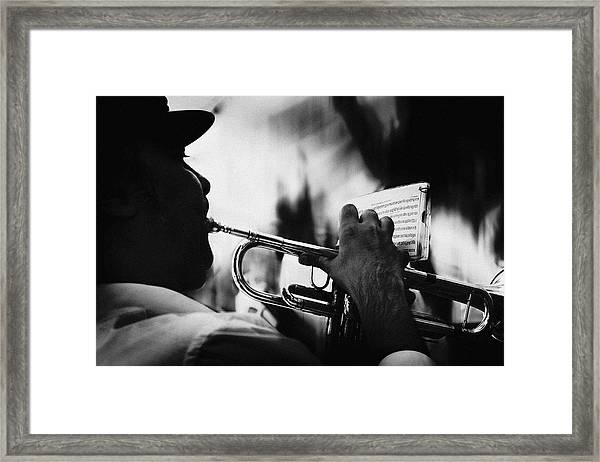 Just Follow My Lead Framed Print by Rui Correia