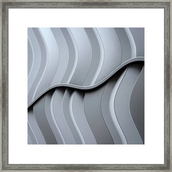 Just Form,no Function Framed Print