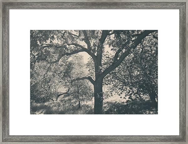 Just Hold On Framed Print