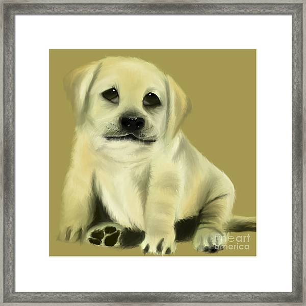 Just Love Me Please Framed Print