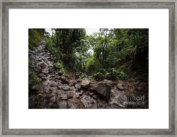 Kalalau Trail Na Pali Coast Framed Print