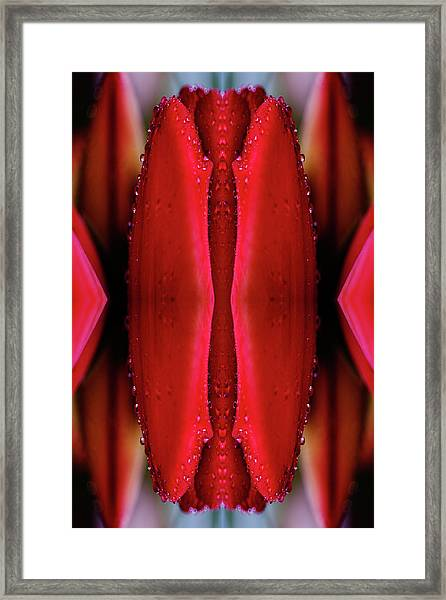Kaleidoscopic Composite Of Lush Red Framed Print
