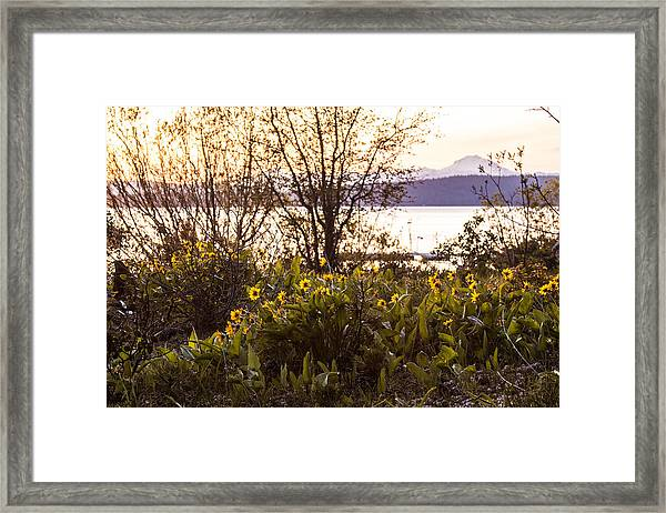 Karel's View Framed Print