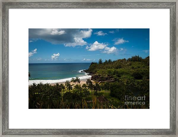 Kauai South Shore Jungle Framed Print