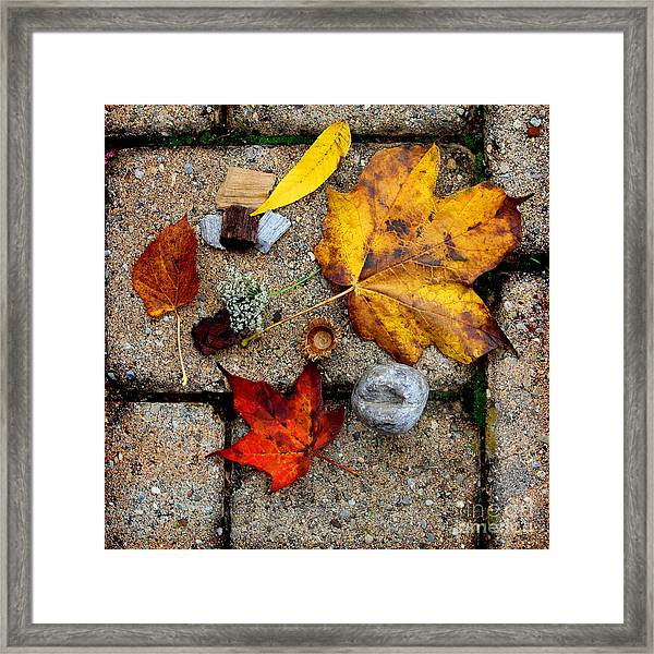Kayla's Treasures Framed Print