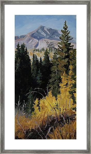 Kebler Pass Framed Print